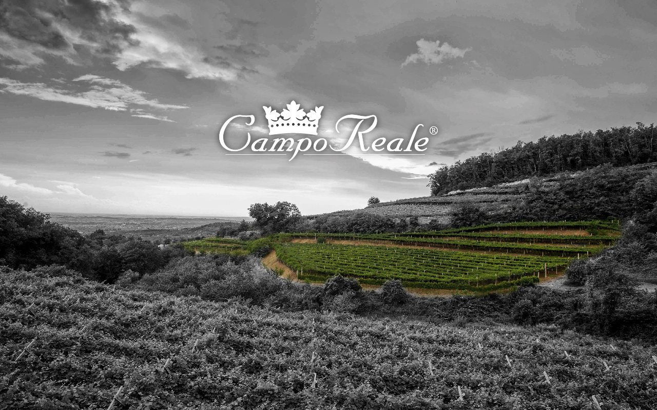 Camporeale